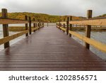 dramatic closeup view from the...   Shutterstock . vector #1202856571