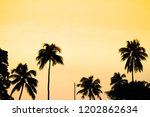 silhouette of tropical coconut... | Shutterstock . vector #1202862634