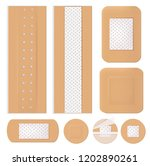 medical bandage. plastering... | Shutterstock .eps vector #1202890261