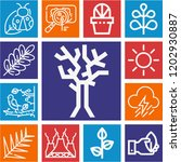 set of 13 nature outline icons...   Shutterstock .eps vector #1202930887