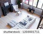 trendy modern design two level  ... | Shutterstock . vector #1203001711