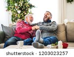a senior father and adult son... | Shutterstock . vector #1203023257