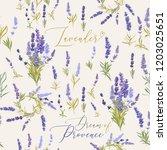 provence lavender seamless... | Shutterstock .eps vector #1203025651