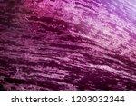 macro view eggplant texture... | Shutterstock . vector #1203032344