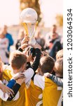 soccer champions. young sport... | Shutterstock . vector #1203064534