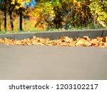 Low Angle Autumn Street...