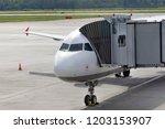 passenger plane on the airfield ...   Shutterstock . vector #1203153907