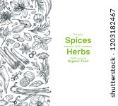 Hand Drawn Herbs And Spices...