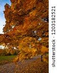 fall season in moscow | Shutterstock . vector #1203182521