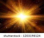 Light Effect. Star Burst With...