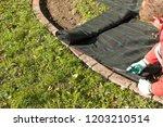 lay garden fleece | Shutterstock . vector #1203210514