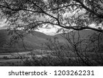 wide mountain range looking... | Shutterstock . vector #1203262231