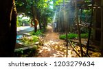 early morning empty footpath | Shutterstock . vector #1203279634