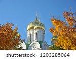 pushkin  russia october 14 ... | Shutterstock . vector #1203285064