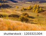 landscape of autumn forest on... | Shutterstock . vector #1203321304
