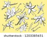 isolated vector on light... | Shutterstock .eps vector #1203385651