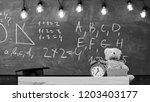 close up of primary school... | Shutterstock . vector #1203403177