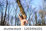 man brutal strong attractive... | Shutterstock . vector #1203406201