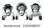 three wise monkeys in... | Shutterstock . vector #1203438547