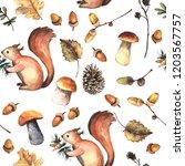 watercolor autumn forest...   Shutterstock . vector #1203567757