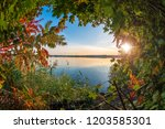 beautiful autumn leaves at the... | Shutterstock . vector #1203585301