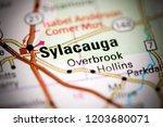 sylacauga. alabama. usa on a map | Shutterstock . vector #1203680071