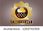 shiny badge with rain icon and ... | Shutterstock .eps vector #1203742504