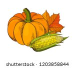 pumpkin and corn with leaves... | Shutterstock .eps vector #1203858844