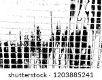 abstract background. monochrome ... | Shutterstock . vector #1203885241