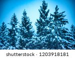 evening snowfall in the...   Shutterstock . vector #1203918181