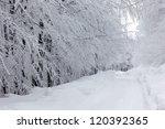 Frozen Mountain Landscape