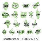 vegetables icons with lettering ... | Shutterstock .eps vector #1203947677
