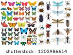 isolated  big set of insects... | Shutterstock .eps vector #1203986614