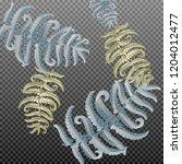 fern frond herbs  tropical... | Shutterstock .eps vector #1204012477