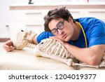 funny doctor with skeleton in...   Shutterstock . vector #1204019377