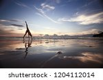 meditation and yoga on the... | Shutterstock . vector #1204112014