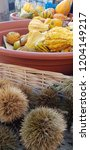 autumn vegetables and fruits | Shutterstock . vector #1204149217