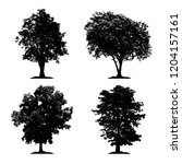silhouette tree vector set on...   Shutterstock .eps vector #1204157161