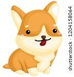 a really happy pure breed corgi ... | Shutterstock .eps vector #1204158064