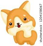 a really happy pure breed corgi ... | Shutterstock .eps vector #1204158067