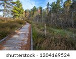 Wilderness Hiking Trail....