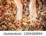 feet of beautiful girl on... | Shutterstock . vector #1204183894