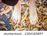 feet of beautiful girl on... | Shutterstock . vector #1204183897