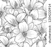 beautiful monochrome  black and ... | Shutterstock . vector #1204220914