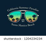 california surfer tee graphic.... | Shutterstock .eps vector #1204234234