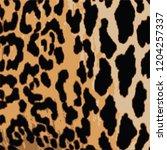 animal skin leopard pattern in... | Shutterstock .eps vector #1204257337