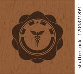 caduceus medical icon inside... | Shutterstock .eps vector #1204321891