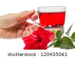 hand with a cup of hot tea and... | Shutterstock . vector #120435061