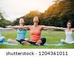 Woman Doing Yoga On The Park  ...