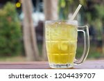 iced chrysanthemum tea on... | Shutterstock . vector #1204439707